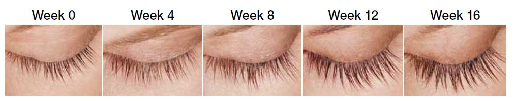Latissee_Eyelash_Progression